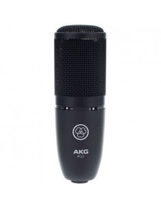 AKG P120 PERCEPTION
