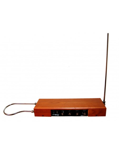 Moog Etherwave Theremin Standard - Color Fresno